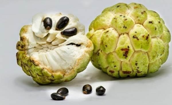Những độc tố nguy hiểm tiềm ẩn trong các loại hoa quả quen thuộc - Ảnh 1