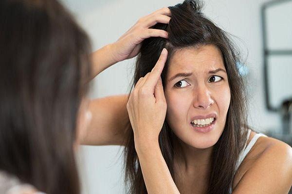 Tác hại của thói quen nhổ tóc bạc