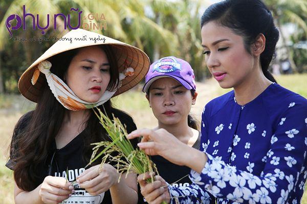 Việt Trinh về miền Tây làm gái quê, động viên bà con vượt qua hạn hán