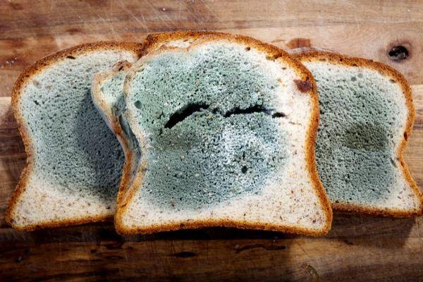 Nhận thấy những dấu hiệu này trên thực phẩm, vứt đi ngay đừng tiếc