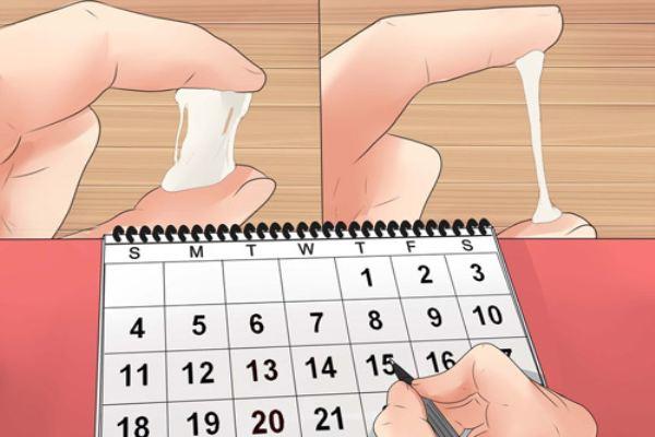 Mách mẹ 4 cách tính chuẩn ngày rụng trứng để có thai