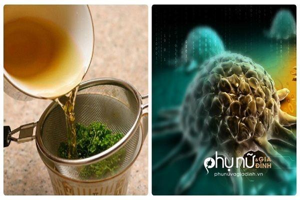 Nghiên cứu mới: Loại trà này giết chết 86% tế bào ung thư phổi trong thời gian ngắn