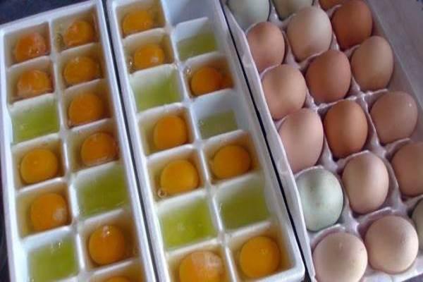 Đập cả khay trứng vào khay đá sớm muộn sẽ trở thành việc ai cũng muốn thử làm