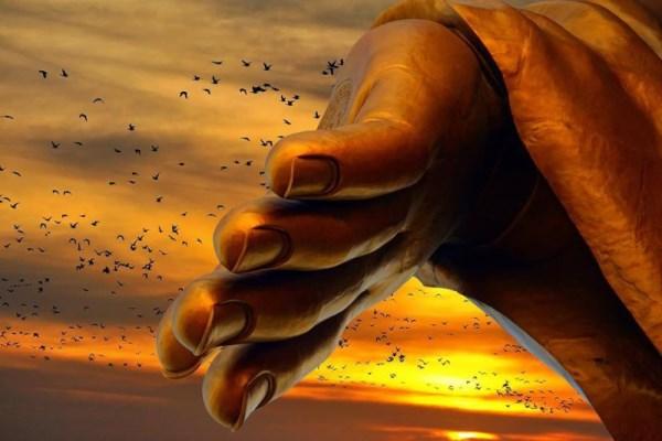 Phật dạy: Trên đời này, có một loại tình cảm gọi là 'vô duyên', có một loại từ bỏ gọi là 'tác thành'