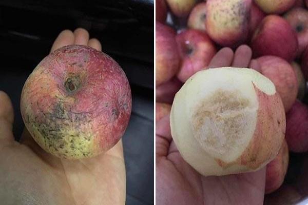 Trường mầm non cho học sinh ăn táo mốc khiến phụ huynh bức xúc