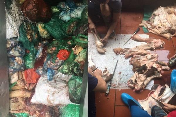 Phát hãi với 1,1 tấn xương trâu, bò thối chuẩn bị đưa ra nhà hàng bún phở