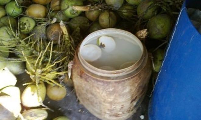Tác hại khi uống nước dừa bị 'tắm trắng' bằng hóa chất