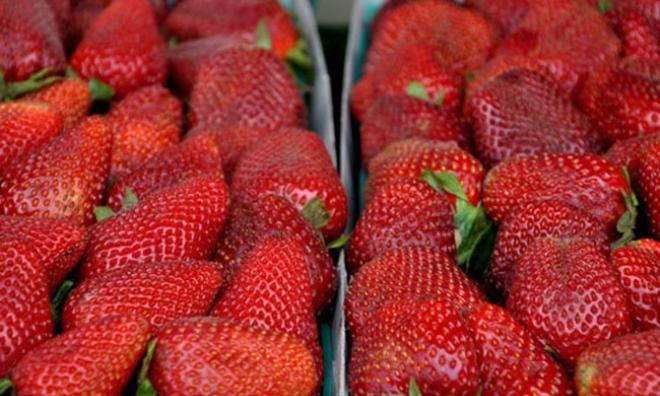 Tuyệt chiêu lựa trái cây trăm quả đều ngon như một
