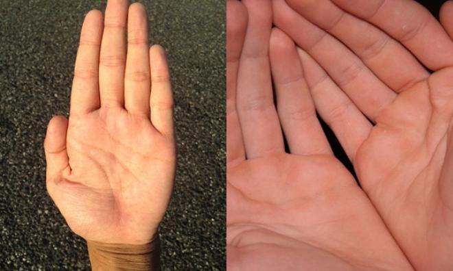 Nhìn điểm này trên bàn tay, đoán ngay gia chủ phúc phận GIÀU SANG, chỉ chuyên nắm quyền