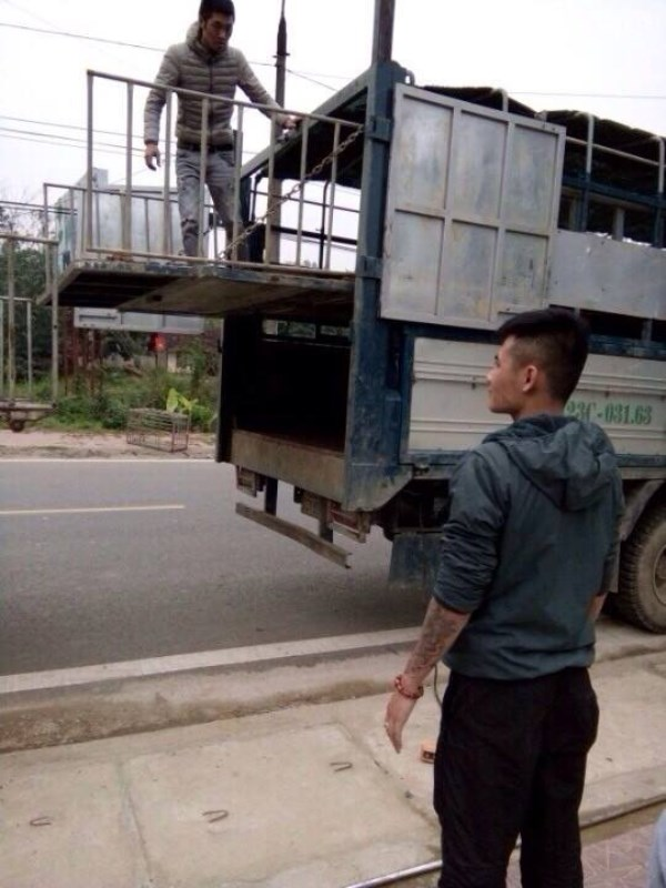 Hà Giang: Chủ trang trại cho côn đồ chặn xe cướp lợn đã bán, ép tài xế ký giấy nợ hơn 3 tỷ đồng? - Ảnh 2