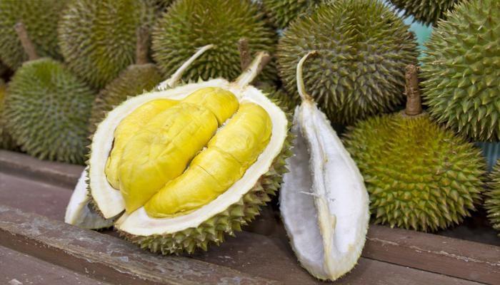 <a target='_blank' href='https://www.phunuvagiadinh.vn/an-sau-rieng.topic'>Ăn sầu riêng</a> có mập không và những lưu ý đặc biệt khi ăn sầu riêng