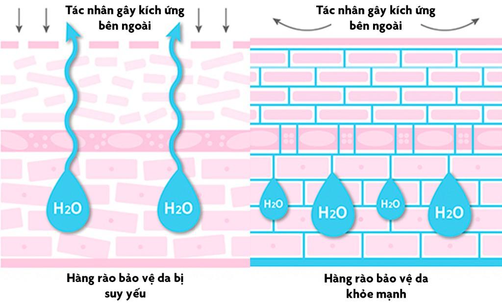 Dấu hiệu cho thấy kem dưỡng ẩm không có tác dụng trên da bạn - Ảnh 2