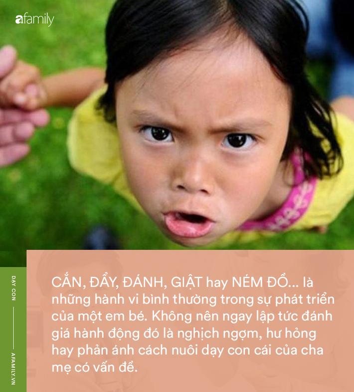 Parent coach Linh Phan: 'Hãy chỉ cho tôi một em bé chưa từng cắn, đánh hay ném đồ, tôi sẽ chỉ cho bạn một con lợn biết bay' - Ảnh 1