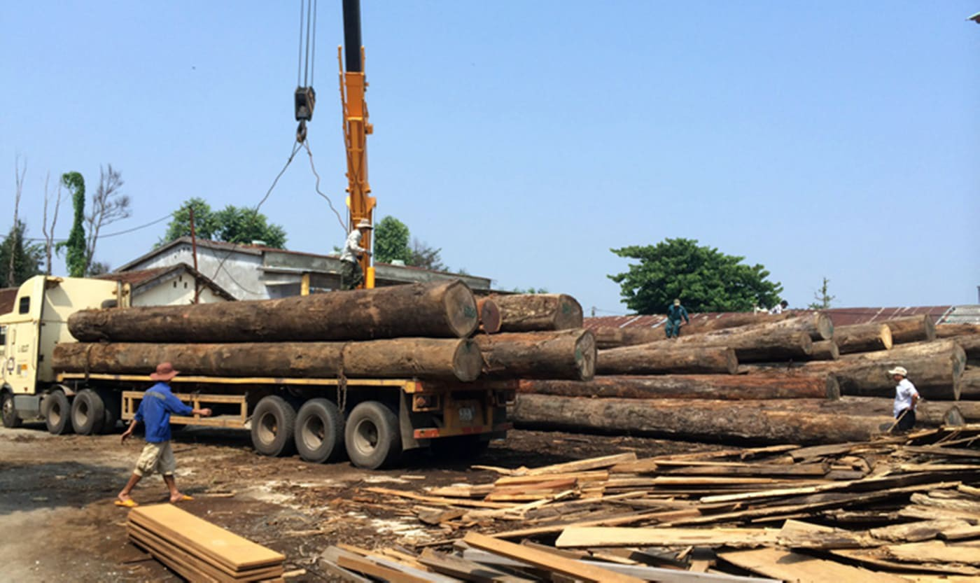 Bị hàng tấn gỗ đè xuống người khi tháo dỡ từ xe tải, tài xế ở Quảng Nam tử vong - Ảnh 1