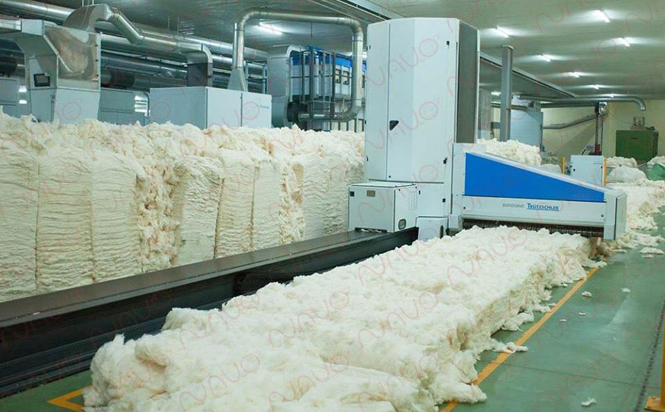 Bị kẹt trong máy bông ở khu công nghiệp tỉnh Tây Ninh, 1 người tử vong - Ảnh 1