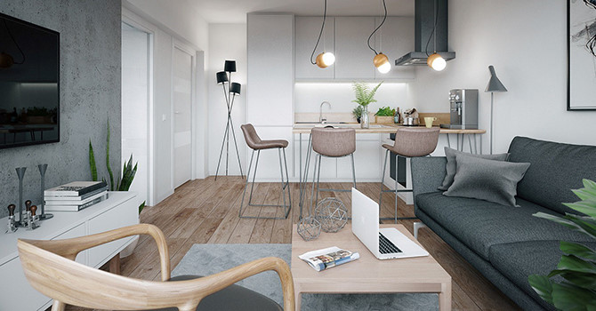Ngắm nhìn căn hộ nhỏ gọn, tiện nghi và lịch lãm - Ảnh 1