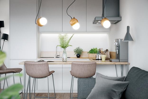 Ngắm nhìn căn hộ nhỏ gọn, tiện nghi và lịch lãm - Ảnh 2