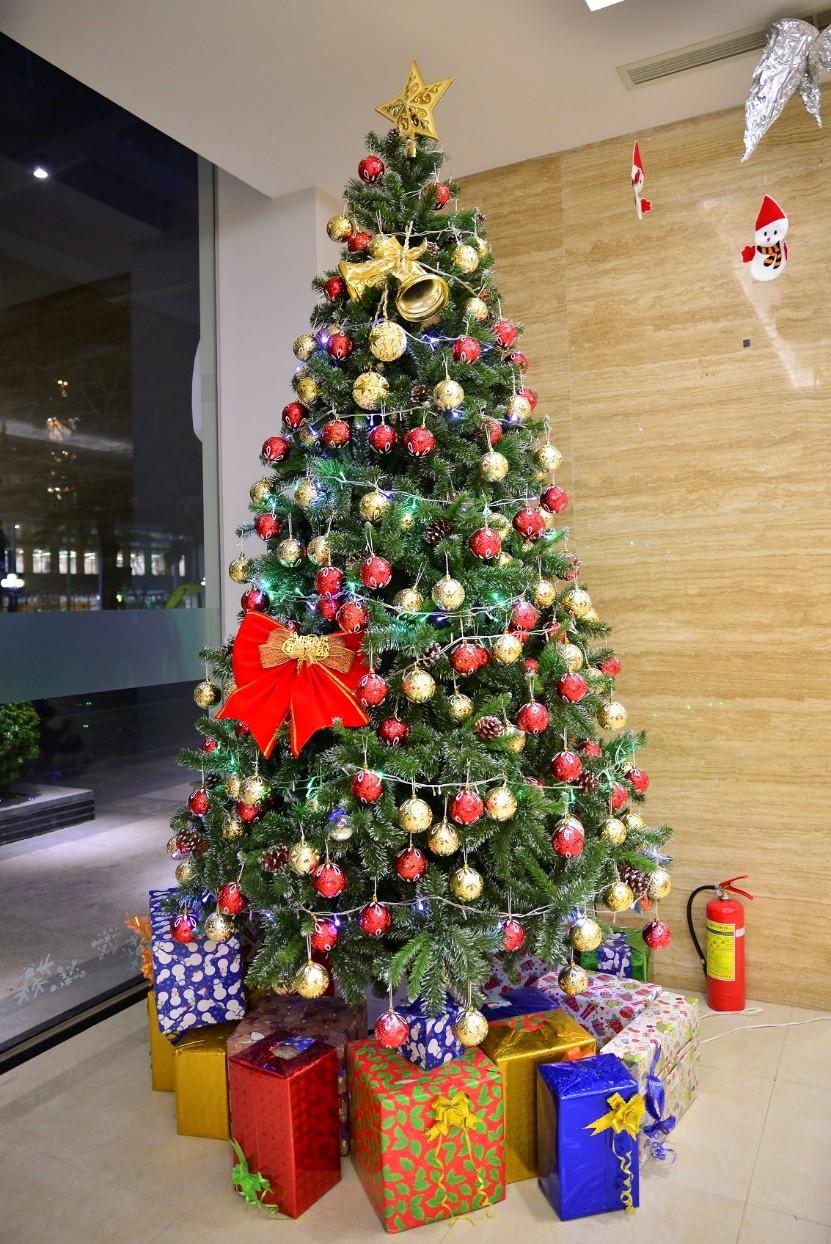 Trang trí tiệc Giáng sinh với cây thông Noel và hộp quà nhiều màu sắc