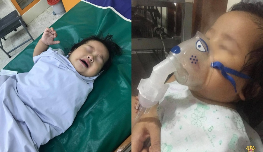 Tiết lộ thành phần thuốc cực độc mẹ nên nhớ sau vụ: Bé trai co giật, suýt chết sau 1 muỗng siro ho - Ảnh 1