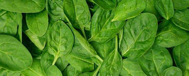 Điểm mặt các loại rau củ giúp giảm cân tuyệt vời sau tết - Ảnh 6