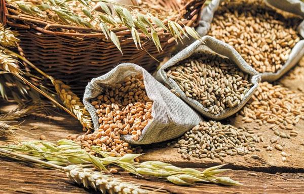 6 thực phẩm tăng miễn dịch cho trẻ trong mùa dịch Covid-19 - Ảnh 2