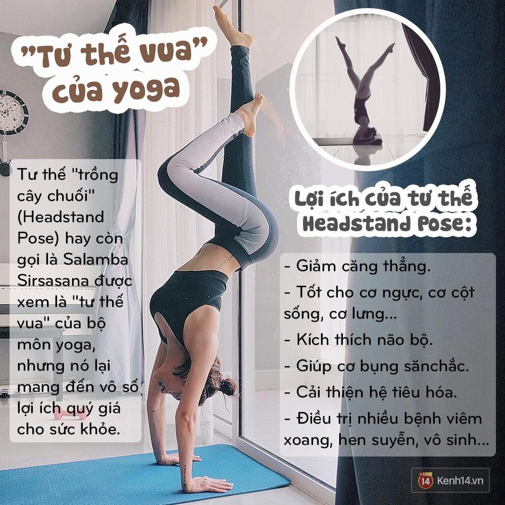 Vì sao một loạt người nổi tiếng như Lee Hyori, Goo Hara, Tăng Thanh Hà, Hồ Ngọc Hà đều tập tư thế yoga này? - Ảnh 12