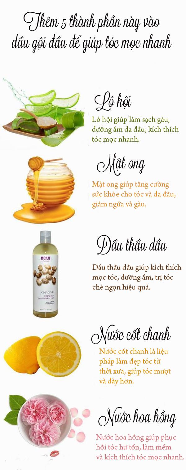 5 thành phần thêm vào dầu gội giúp tóc mọc nhanh và chắc khỏe - Ảnh 1