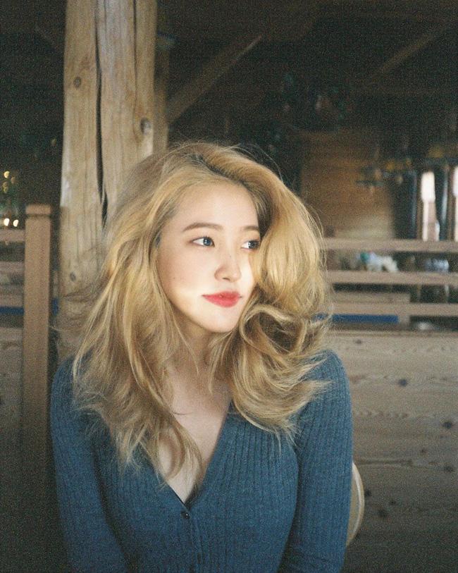 Idol Hàn nhuộm tóc rất nhiều nhưng tóc họ lúc nào cũng mượt mà đáng ghen tị nhờ 5 bí kíp chăm sóc này - Ảnh 5