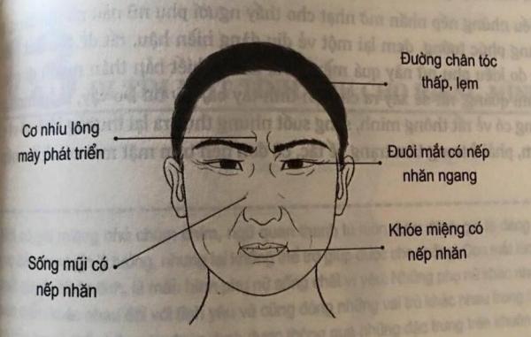 Nhân tướng học: Những đặc điểm xấu trên gương mặt đàn ông có tính trăng hoa, nhiều chuyện - Ảnh 4
