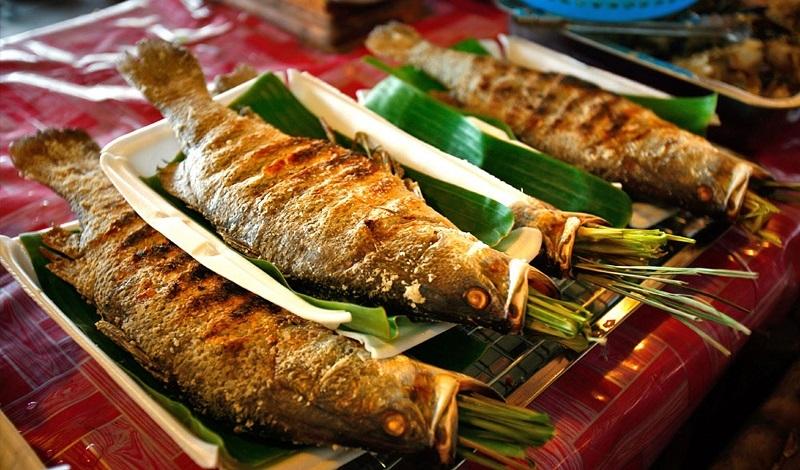 5 loại cá ĂN vào dễ bị NGỘ ĐỘC, nặng có thể dẫn đến ung thư và tử vong - Ảnh 1