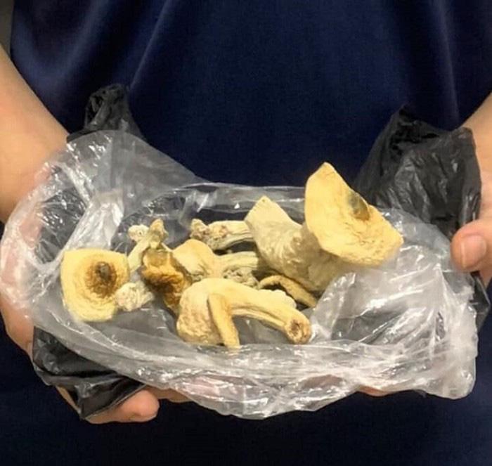 Hà Nội: Bắt quả tang nam thanh niên mang 'nấm ma túy' đi tiêu thụ - Ảnh 2