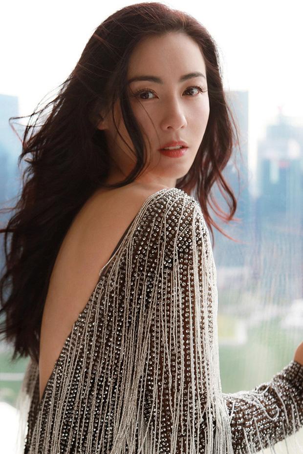 Hé lộ nguyên nhân Trương Bá Chi không đi thêm bước nữa dù đã gần 10 năm ly hôn Tạ Đình Phong - Ảnh 6