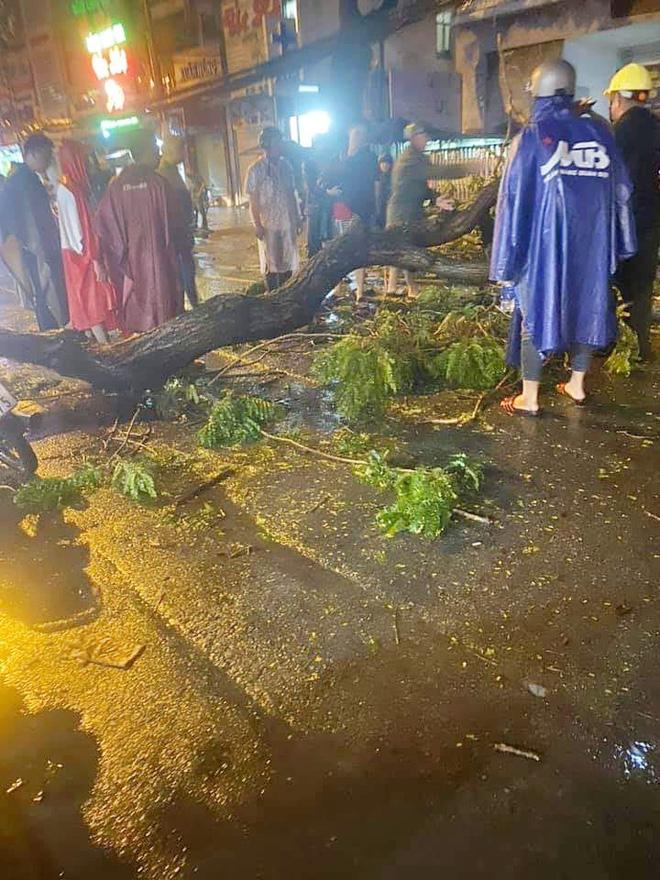 NÓNG: Nhánh cây to bị gãy, đè chết người đàn ông đi xe máy ở Sài Gòn - Ảnh 1