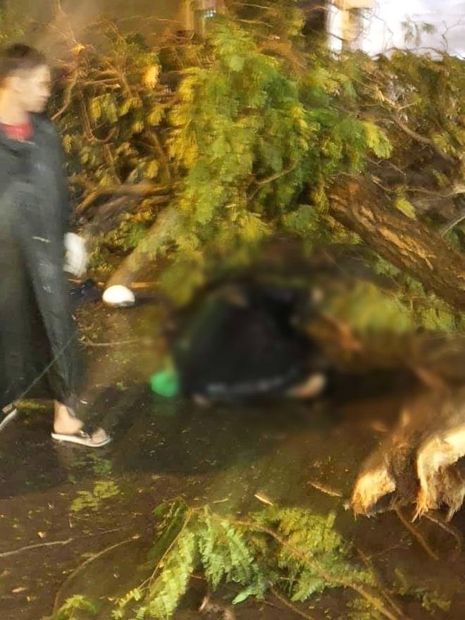 NÓNG: Nhánh cây to bị gãy, đè chết người đàn ông đi xe máy ở Sài Gòn - Ảnh 2