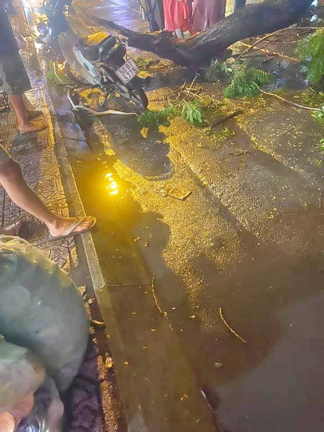 NÓNG: Nhánh cây to bị gãy, đè chết người đàn ông đi xe máy ở Sài Gòn - Ảnh 3