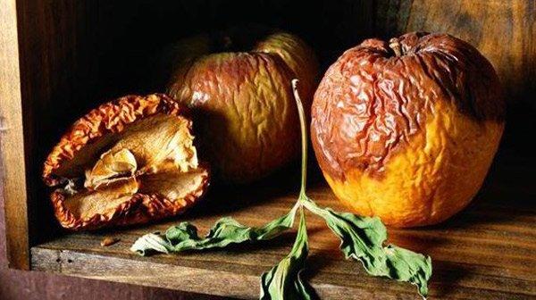 Không chỉ thức ăn nấm mốc gây ung thư, 2 thứ độc hại không kém nhưng vẫn có trong bếp - Ảnh 2