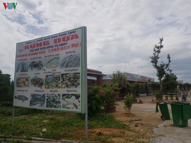Nhiều dự án lấn chiếm rừng dừa Bảy Mẫu - Ảnh 1
