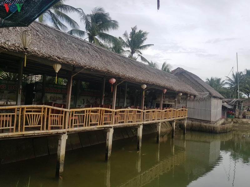 Nhiều dự án lấn chiếm rừng dừa Bảy Mẫu - Ảnh 3
