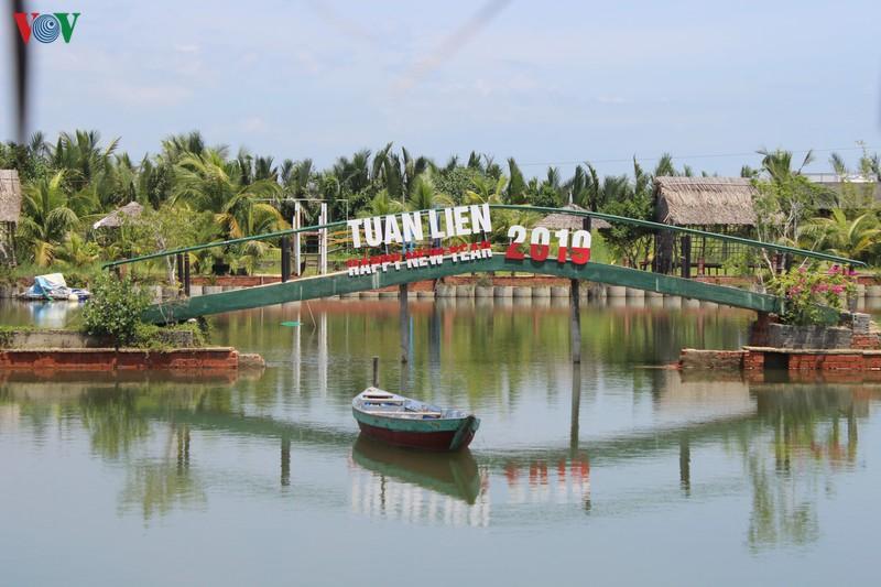 Nhiều dự án lấn chiếm rừng dừa Bảy Mẫu - Ảnh 5