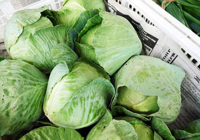 Đi chợ thường xuyên mà chị em không biết mẹo chọn bắp cải sạch tươi này thì mãi mãi không có rau ngon để ăn - Ảnh 2