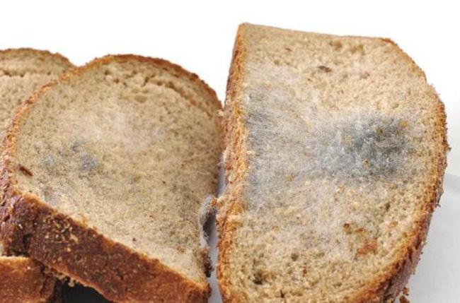 Người phụ nữ bị ung thư dạ dày giai đoạn cuối chỉ vì thói quen nấu ăn mà rất nhiều người cũng thường làm - Ảnh 4