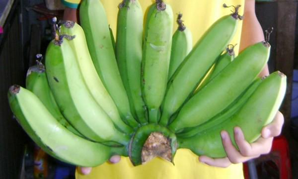 Cách xử lý thực phẩm sau Tết khoa học để đảm bảo sức khỏe các bà nội trợ nên biết - Ảnh 4