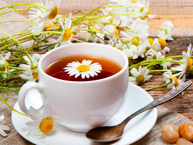 Biết được những tác dụng tuyệt vời này của trà hoa cúc, bạn sẽ uống mỗi ngày để da đẹp, dáng thon - Ảnh 2