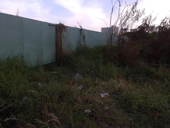 Phát hiện xác chết khô nghi là người dưới lớp cỏ - Ảnh 1