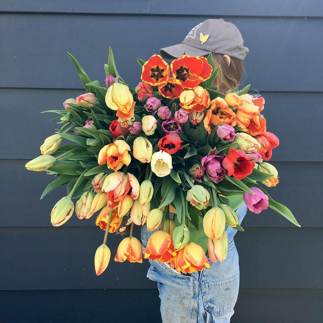 Cô gái trẻ trồng cả vườn rau và hoa theo phương pháp hữu cơ vì yêu thích sống trong không gian xanh - Ảnh 8