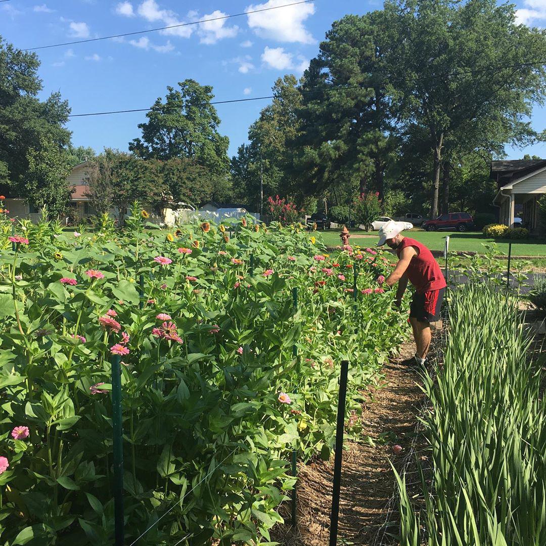 Cô gái trẻ trồng cả vườn rau và hoa theo phương pháp hữu cơ vì yêu thích sống trong không gian xanh - Ảnh 11