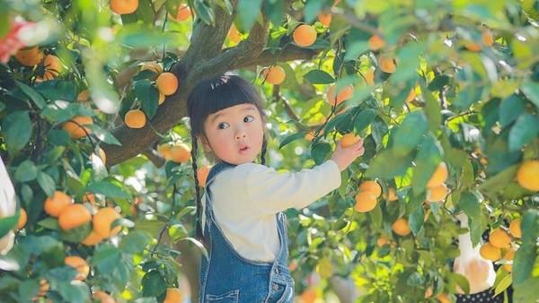 Kỹ năng nuôi dạy con siêu đẳng của cha mẹ Nhật để trẻ thông minh và có trách nhiệm hơn - Ảnh 6