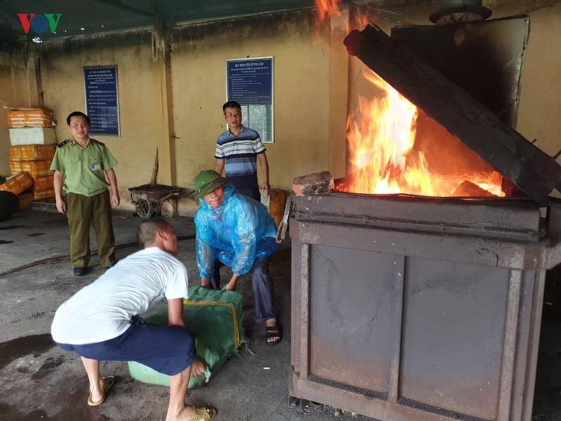 Tiêu hủy trên 700 kg nầm lợn nhập lậu ở Lạng Sơn - Ảnh 2
