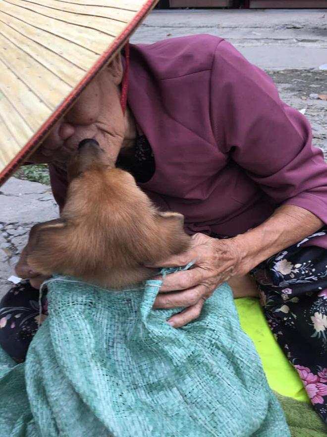 Cụ già hôn tạm biệt chú chó nhỏ trên vỉa hè cùng câu chuyện đau lòng khiến người đọc không cầm được nước mắt - Ảnh 4