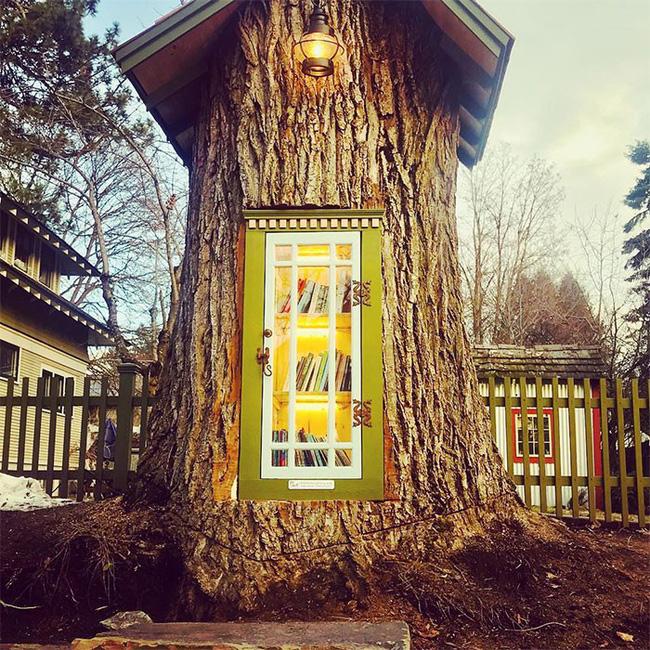 Hi sinh cây cổ thụ trăm tuổi cạnh nhà, người phụ nữ xây dựng thành một thư viện đầu tiên cho cả khu dân cư - Ảnh 3